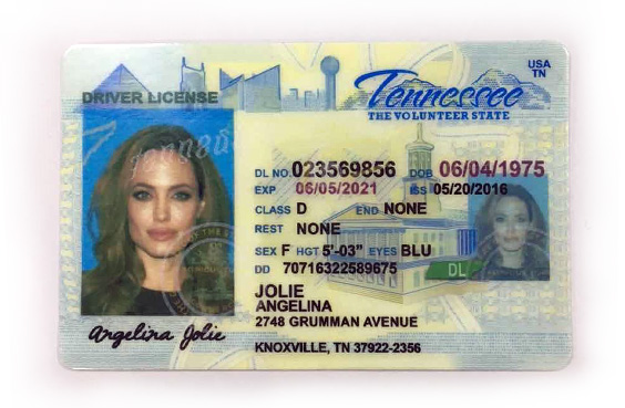 Fake License - Tennessee
